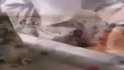 عمليات خطف واعتقال المدنيين من قبل الجيش الصفوي في الانبار