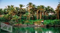 الحلم العراقي
